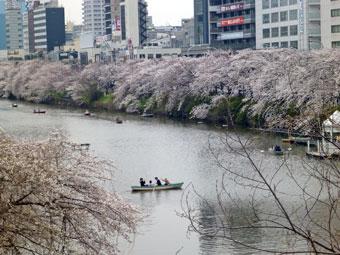 2013年3月23日 飯田橋の桜並木