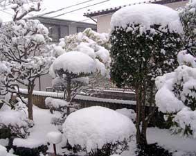 2006年1月21日 銀世界の横浜市内