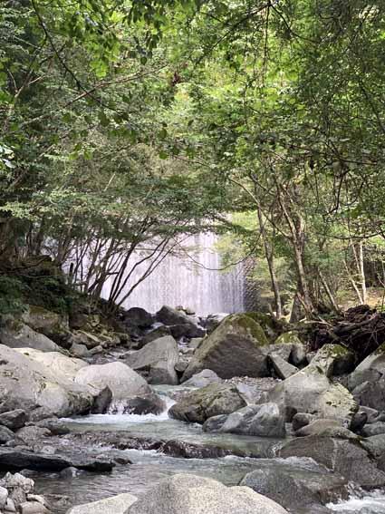 西丹沢公園橋から第1堰堤へ向かう